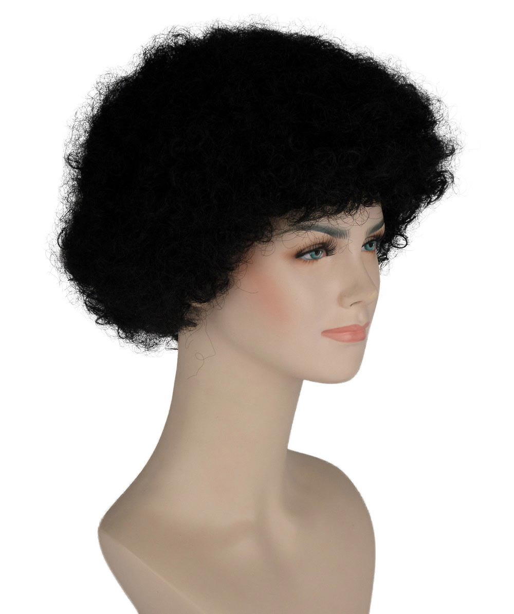 (1-2 Days Dispatch) Black Afro Wig HW-245